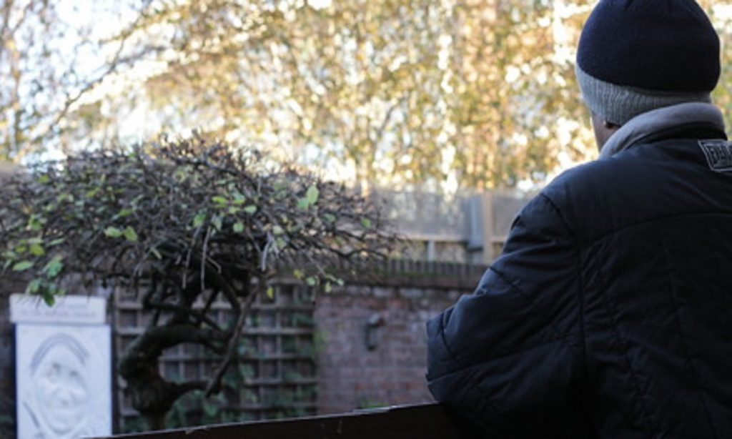 Image of Abdi, a refugee from Somalia, in a garden
